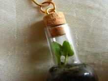 how-to: mini terrarium necklace