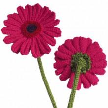 free gerbera daisy knitting pattern