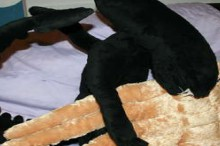 how-to: plush alien facehugger pillow pet