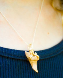how-to: easy wire wrapped shark tooth necklace