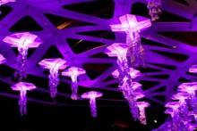 interactive origami jellyfish swarm