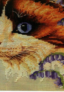 "counted cross stitch: embroidery ""cat"""
