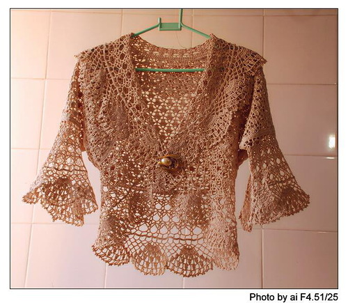 Crochet Bolero Pattern : ... lace purple top, free crochet patterns make handmade, crochet, craft