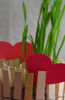 valentine gifts: clothespin planter
