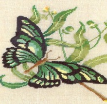 embroidery butterfly picture